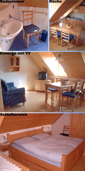 Collage_Schwalbennest